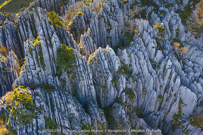 Rock formations, Cantabria, Spain