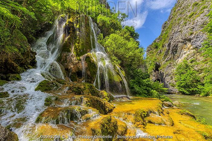 Waterfall over moss, Green Cascade, Vernaison River, Vercors, France