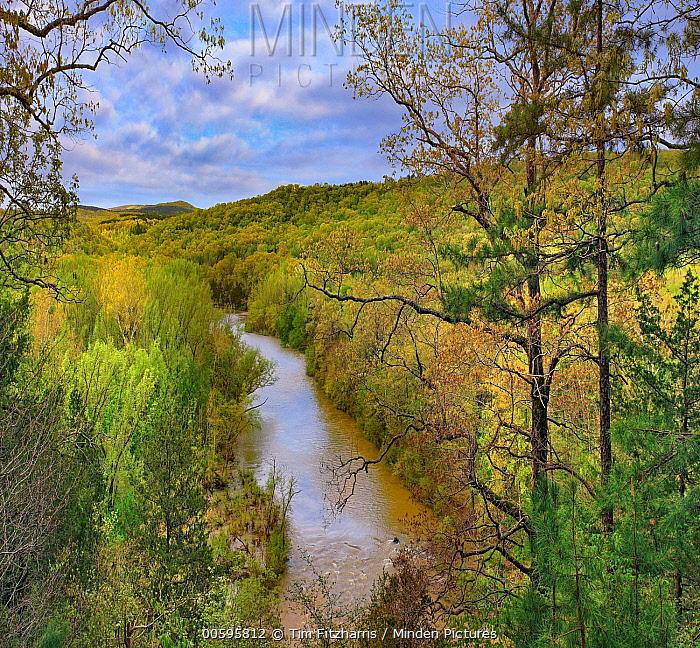 River, Ozark-Saint Francis National Forest, Arkansas