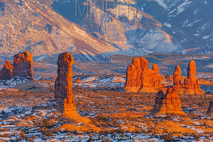 Sandstone rock formations in winter, La Sal Mountains, Arches National Park, Utah