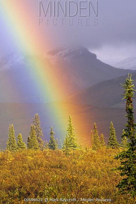 Tundra with rainbow, North America