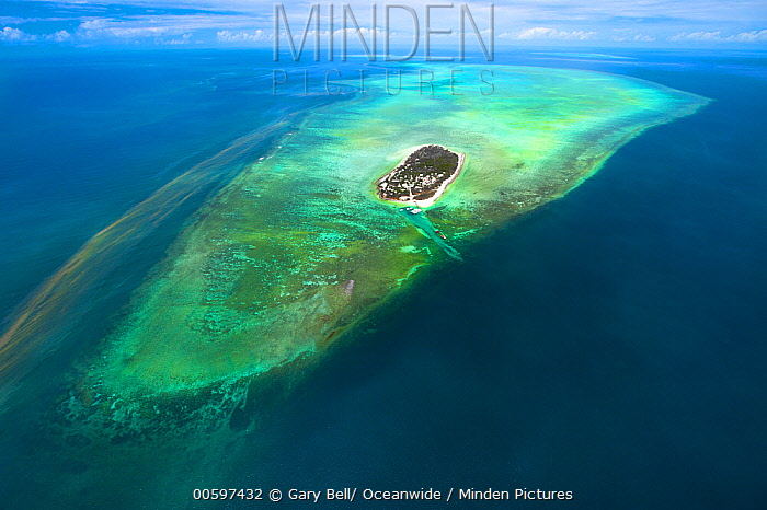 Tropical island with red tide, Heron Island, Great Barrier Reef, Queensland, Australia