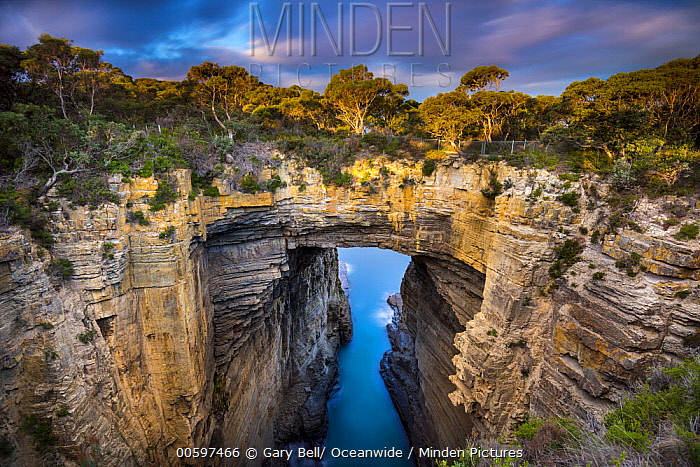Rock arch, Tasmans Arch, Tasman National Park, Tasmania, Australia
