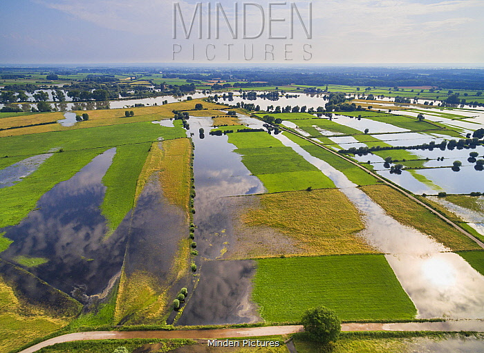 High water during summer, Ijssel River, Gelderland, Netherlands