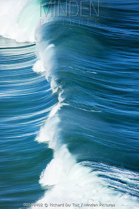 Wave, Western Cape, South Africa