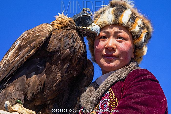 Golden Eagle (Aquila chrysaetos) huntress, Altai Mountains, Bayan Ulgii, Mongolia