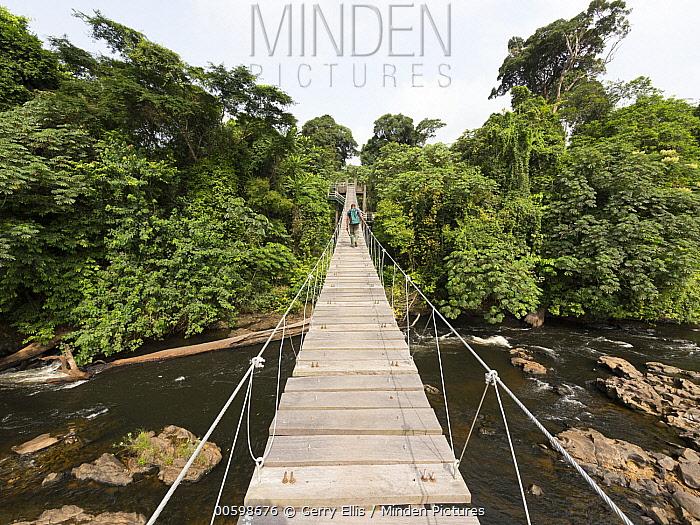 Suspension bridge, Mana River, Korup National Park, western Cameroon