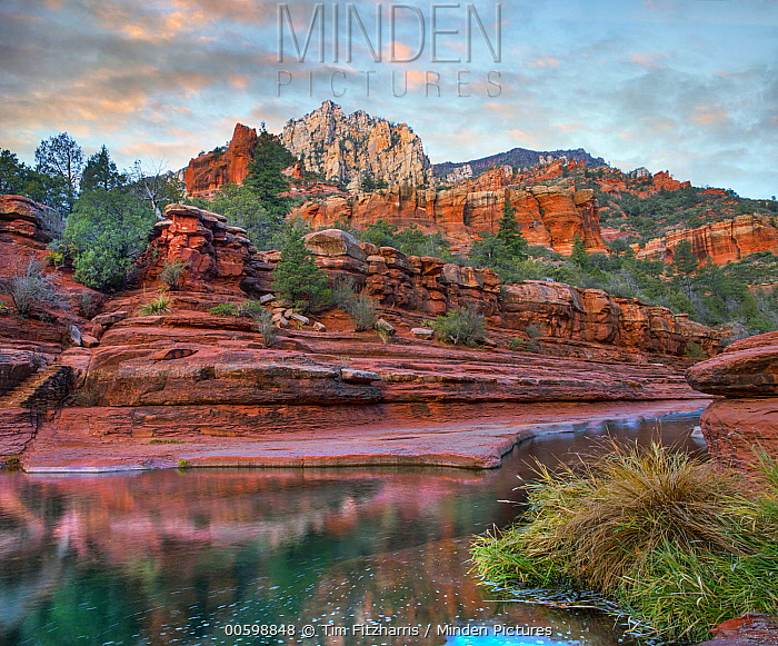 Canyon, Oak Creek, Coconino National Forest, Arizona