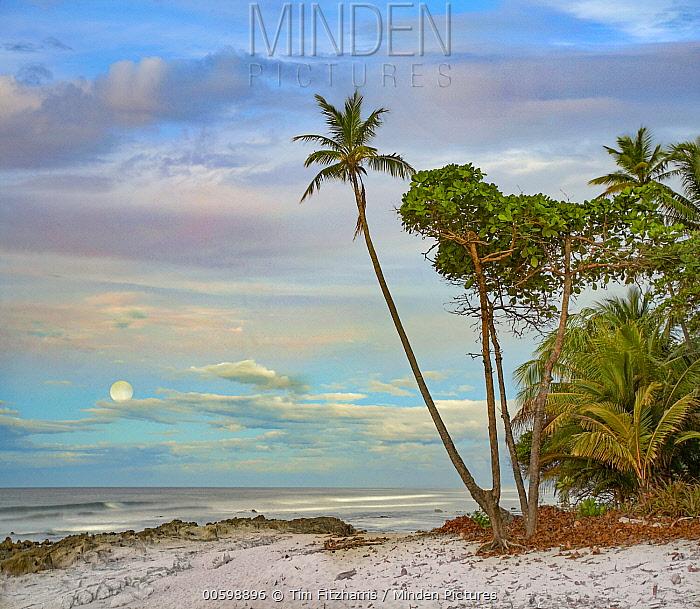 Beach and moon, Playa Santa Teresa, Costa Rica