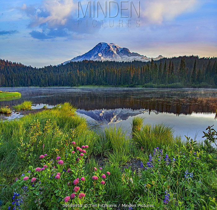 Reflection Lake, Mount Rainier National Park, Washington