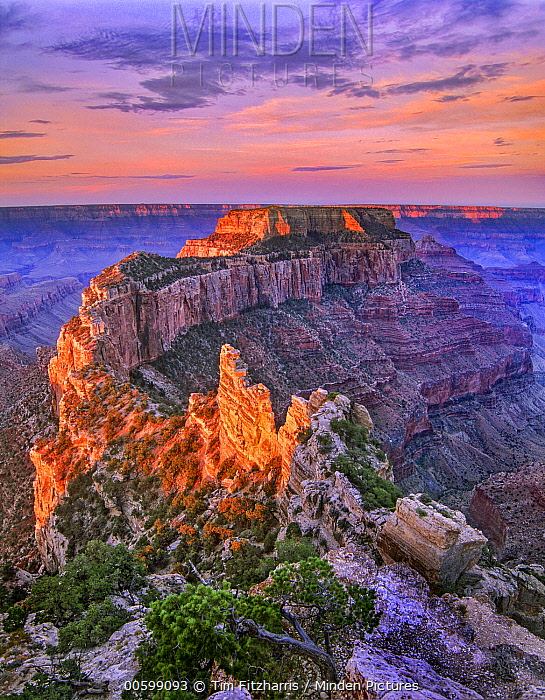Wotans Trone from Cape Royal, Grand Canyon National Park, Arizona