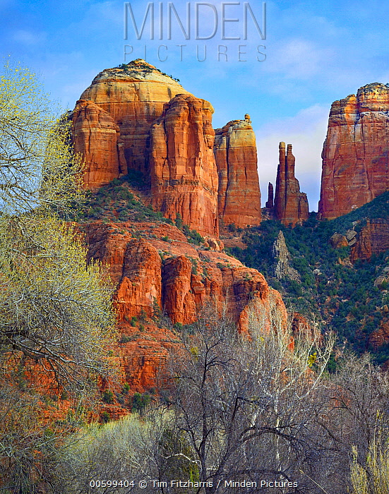 Cathedral Rocks near Sedona, Arizona