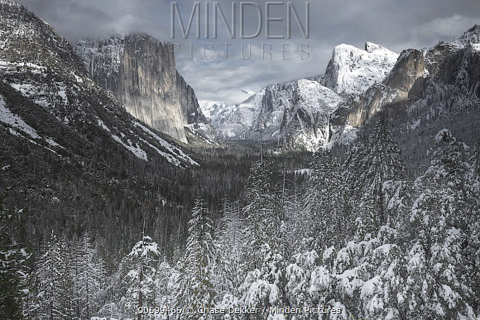 Winter in Yosemite Valley, Yosemite National Park, California