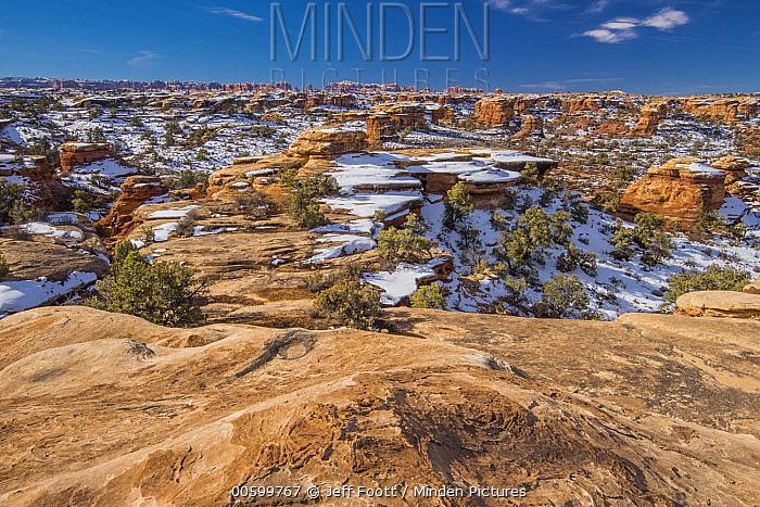 Desert in winter, Canyonlands National Park, Utah