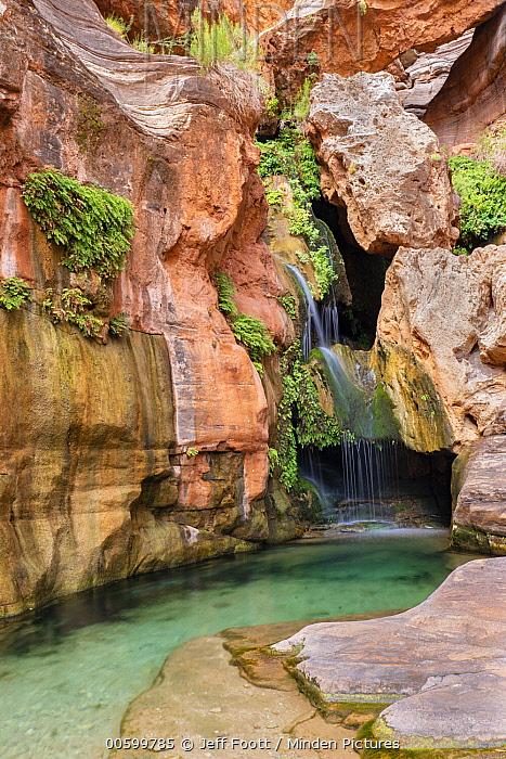 Waterfall, Elves Chasm, Arch Creek, Colorado River, Grand Canyon National Park, Arizona