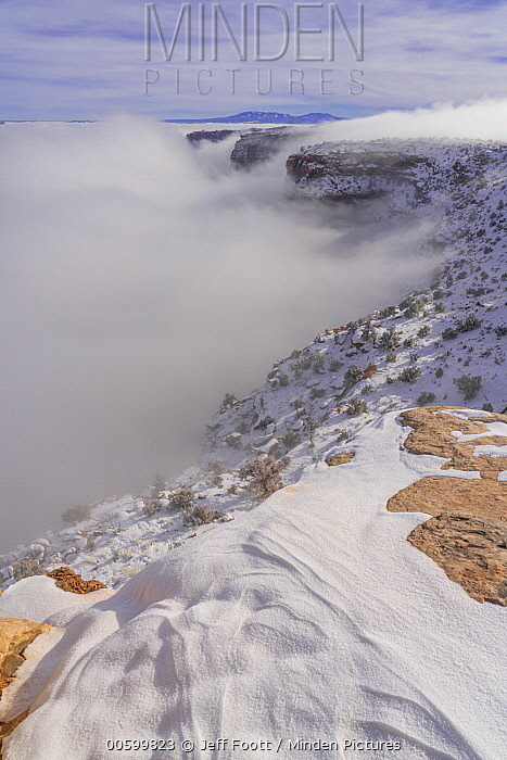 Canyon in fog in winter, Shafer Canyon, Canyonlands National Park, Utah