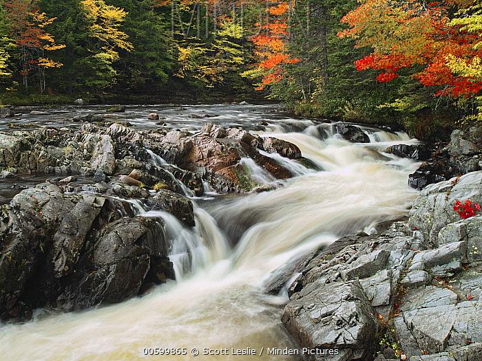 Waterfall in autumn, North River Falls, Cape Breton Island, Nova Scotia, Canada