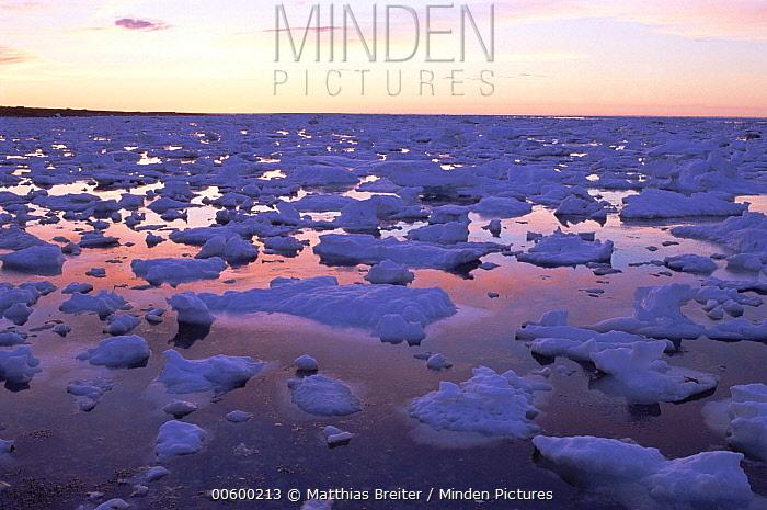 Pack ice floes at sunset on Hudson Bay during break-up, Churchill, Manitoba, Canada  -  Matthias Breiter