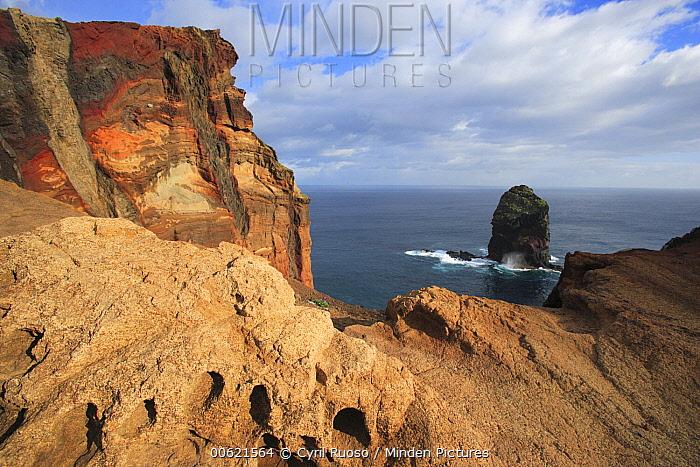 Rocky cliff in the Ponta de Sao Lourenco Nature Reserve, Madeira  -  Cyril Ruoso