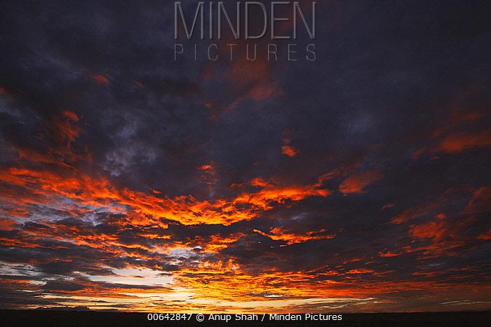 Sunrise, Masai Mara, Kenya