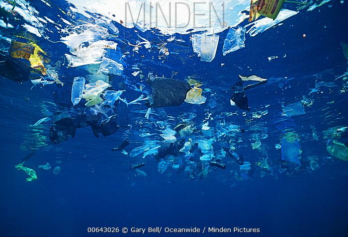 Floating plastic debris, Sipadan Island, Malaysia