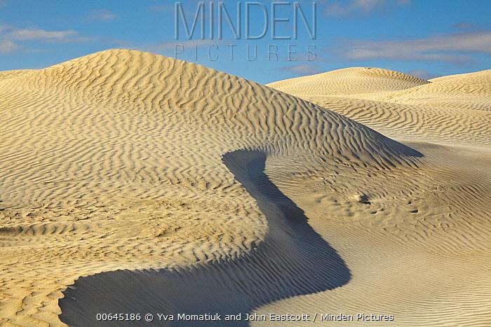 Sand dunes, Cactus Beach, Nullarbor Plain, South Australia, Australia