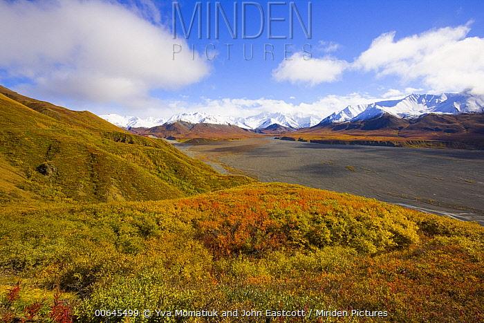Tundra and cumulus clouds, Alaska Range, Denali National Park, Alaska
