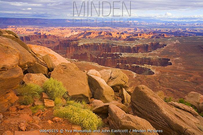 Desert plateau, Grand View Point, Canyonlands National Park, Utah