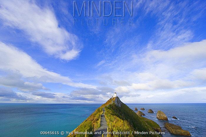Coast, Nugget Point Lighthouse, Otago, South Island, New Zealand