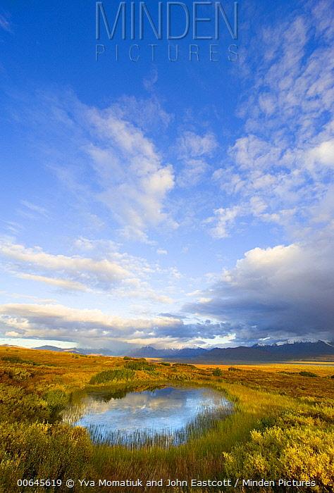 Cumulus clouds and tundra pond, Denali National Park, Alaska