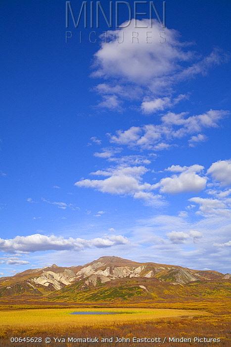 Cumulus clouds over tundra, Denali National Park, Alaska