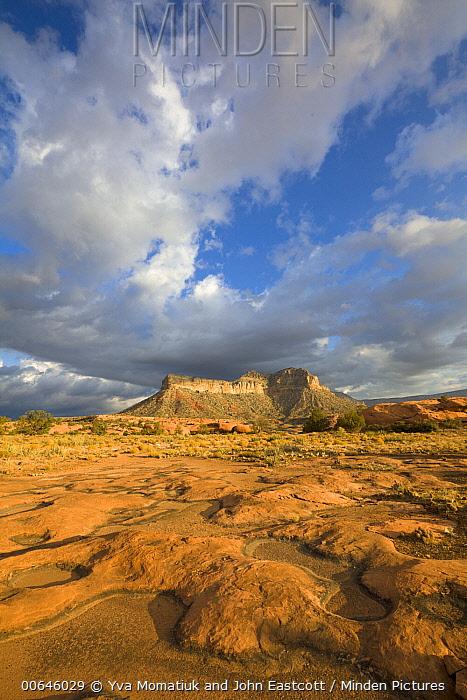 Cumulus clouds over sandstone plateau, Toroweap Overlook, Grand Canyon National Park, Arizona