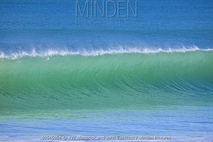 Wave, Anaura Bay, New Zealand