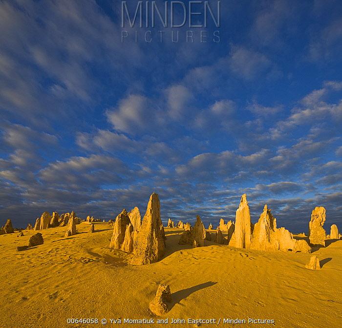 Limestone pinnacles, Nambung National Park, Western Australia, Australia