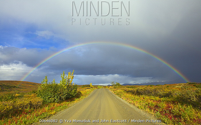 Rainbow over gravel road and tundra, Denali National Park, Alaska