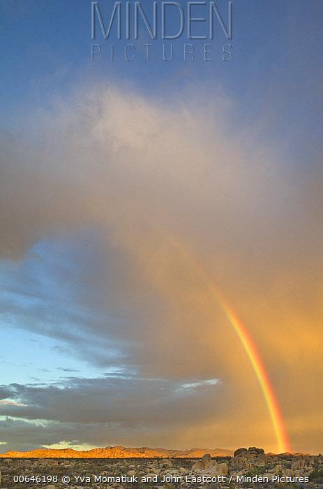 Double rainbow over desert, Joshua Tree National Park, California
