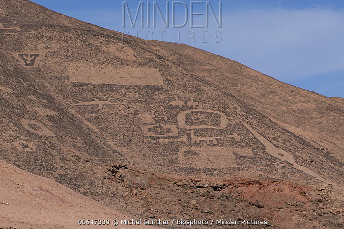 Geoglyphs of Pintados, Atacama Desert, Chile