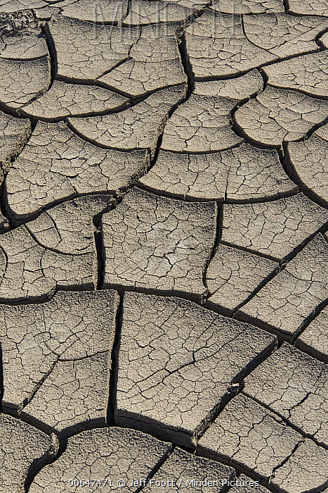 Cracked mud patterns from drought, Lake Powell, Glen Canyon National Recreation Area, Utah