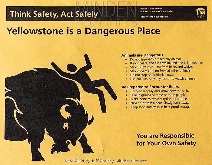 Bison warning pamphlet, Yellowstone National Park, Wyoming