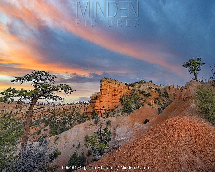 Rock formation, Bryce Canyon National Park, Utah