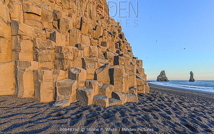 Coastal cliff made of basalt columns and sea stacks, Vik, Iceland