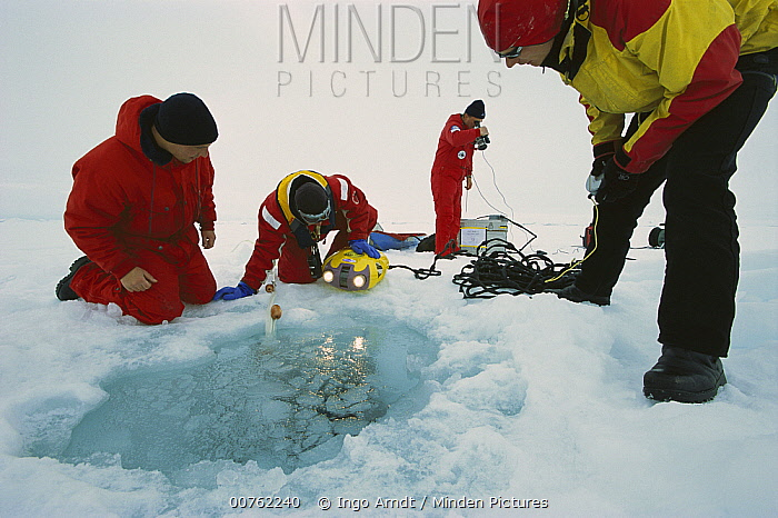 Researchers using diving robot to observe sea ice from below, Ispol expedition, Weddell Sea, Antarctica  -  Ingo Arndt