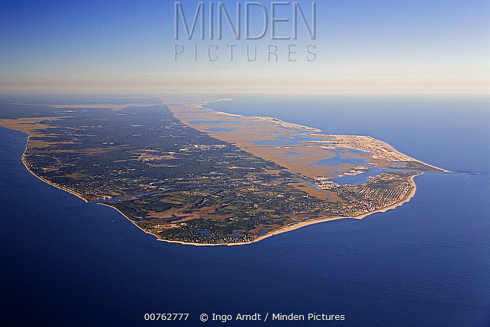 Aerial view of Cape May Peninsula, New Jersey  -  Ingo Arndt