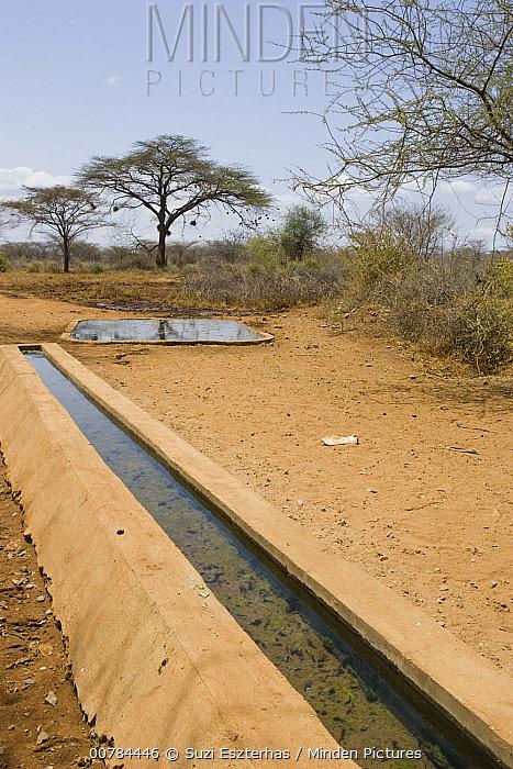 Wildlife waterhole built by Kalama Wildlife Conservancy, Kenya  -  Suzi Eszterhas
