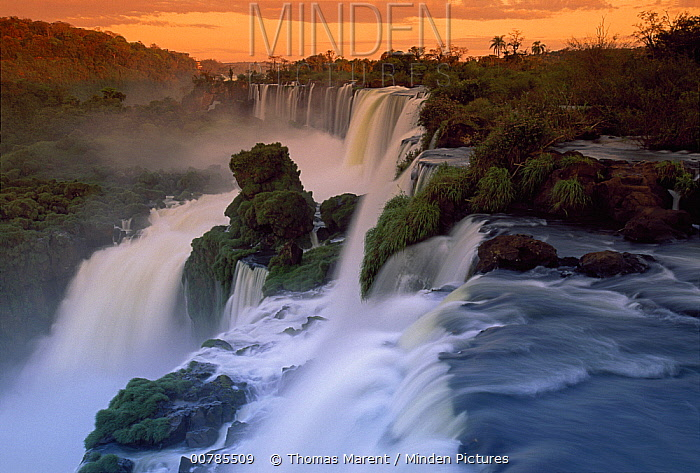 Cascades of the Iguacu Falls, the world's largest waterfalls, Iguacu National Park, Argentina  -  Thomas Marent