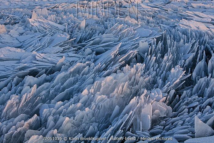 Hummocking ice, Netherlands  -  Karin Broekhuijsen/ Buiten-beeld