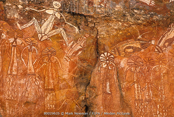 Petroglyphs, Aboriginal rock art, Nourlangie, Kakadu, Australia  -  Mark Newman/ FLPA