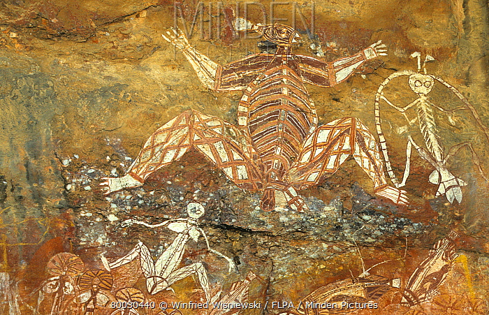 Archaeology, Rock Painting of Australian Aborigines, Arnhem Land, Northern Australia  -  Winfried Wisniewski/ FLPA