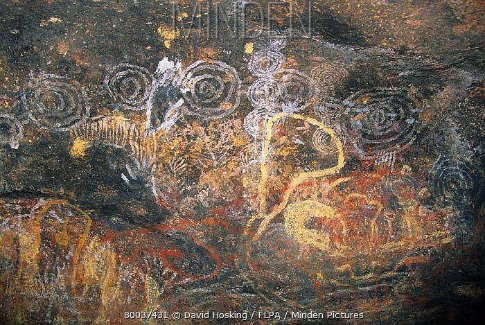 Australia, rock art at Ayers Rock, Uluru-kata, Tjuta National Park, Northern Territory  -  David Hosking/ FLPA