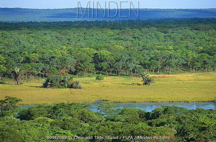 Pristine miombo woodland, natural clearing with river, Lake Wakawaka, Zambia  -  Chris & Tilde Stuart/ FLPA